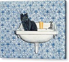 My Bathroom Cat  Acrylic Print by Ditz