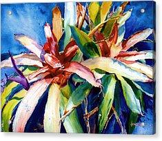My Bromelias Acrylic Print by Estela Robles