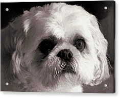 My Bubba - Painting Acrylic Print
