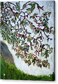 My Daughter's Apple Tree Acrylic Print