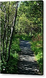 My Favorite Path Acrylic Print