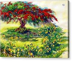 My Flamboyant Tree Acrylic Print by Estela Robles