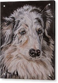 My Funny Valentine - Dog Portrait Acrylic Print by Cheryl Pass