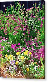 Acrylic Print featuring the photograph My Garden   by Donna Bentley