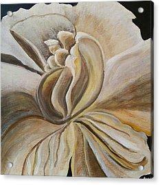 My Gardenia  Acrylic Print by Carol Duarte