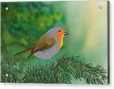 My Little Chickadee Acrylic Print by Harry Dusenberg