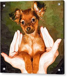 My Lovely Puppy Acrylic Print by Irene Pet Artist