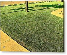 My Neighbor's Yard Acrylic Print by Lenore Senior