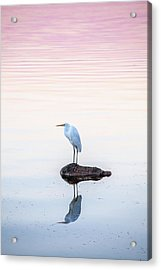 My Own Private Island Acrylic Print