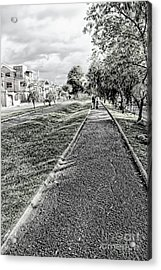 Acrylic Print featuring the photograph My Street II by Al Bourassa