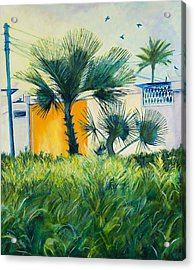 My Street Orange Acrylic Print by Chana Helen Rosenberg