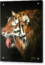 My Tiger - The Year Of The Tiger Acrylic Print