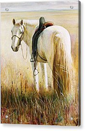 My White Horse  Acrylic Print by Ji-qun Chen