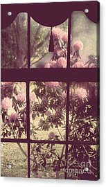 My Window Acrylic Print by Mindy Sommers