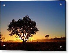 Myakka Sunrise Acrylic Print