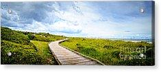 Myrtle Beach State Park Boardwalk Acrylic Print by David Smith