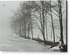 Mysterious Winter  Acrylic Print by Karol Livote