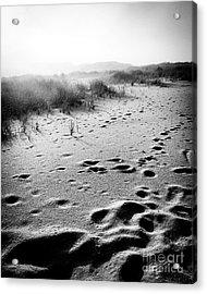 Mystery Beach Acrylic Print by JMerrickMedia