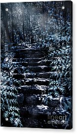 Mystery Forest Stairs Landscape Acrylic Print by Jorgo Photography - Wall Art Gallery