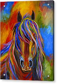 Mystery Horse Acrylic Print