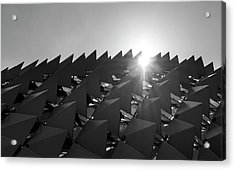 Mystery Structure Acrylic Print