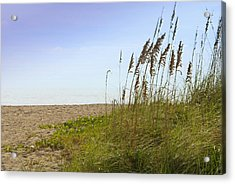 Mystic Beach Acrylic Print by Robert Smith