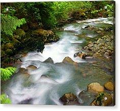 Mystic Creek Acrylic Print by Marty Koch