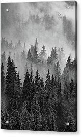 Mystic  Acrylic Print