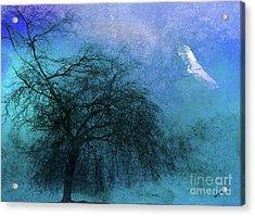 Mystic Flight Acrylic Print