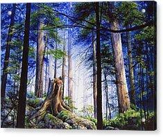 Mystic Forest Majesty Acrylic Print by Hanne Lore Koehler