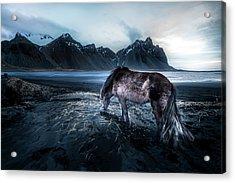 Mystic Icelandic Horse Acrylic Print