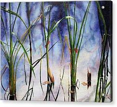 Mystic Pond Acrylic Print by Marina Petro
