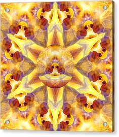 Acrylic Print featuring the digital art Mystic Universe Kk 14 by Derek Gedney