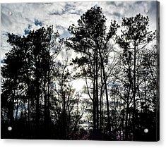 Mystic Wilderness Acrylic Print
