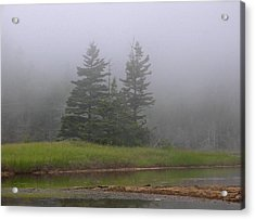 Mystical Acadia National Park Acrylic Print by Juergen Roth