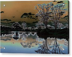 Mystical Africa Acrylic Print