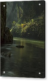 Mystical Canyon Acrylic Print