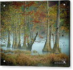 Acrylic Print featuring the photograph Mystical Mist by Iris Greenwell