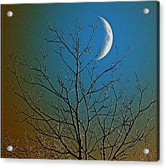 Mystical Moon Acrylic Print by Nancy TeWinkel Lauren