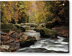 Mystique Waters Acrylic Print