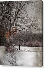 Acrylic Print featuring the photograph N by Robin-Lee Vieira