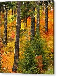 N W Autumn Acrylic Print