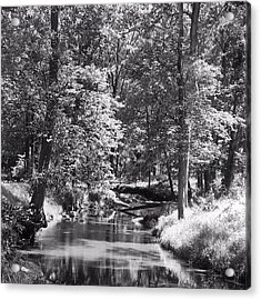 Acrylic Print featuring the photograph Nadine's Creek In Black And White by Kathy Kelly