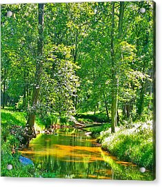 Nadine's Creek Acrylic Print by Kathy Kelly