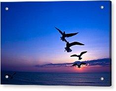 Nags Head Sunrise Acrylic Print