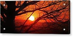 Naked Tree At Sunset, Smith Mountain Lake, Va. Acrylic Print