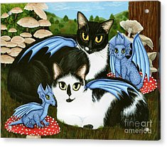 Nami And Rookia's Dragons - Tuxedo Cats Acrylic Print
