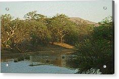 Namibian Waterway Acrylic Print by Ernie Echols