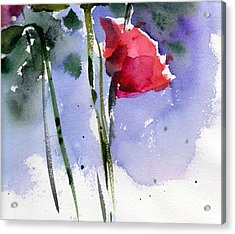 Nancy Jane's Rose Acrylic Print