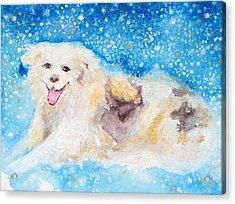 Nanny Bliss Acrylic Print by Ashleigh Dyan Bayer